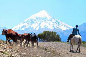 3 powody, żeby odwiedzić Argentynę