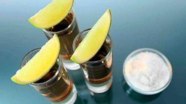 Picie tequili z solą i cytryną to hollywoodzki wymysł. W istocie tequilę najlepiej pić bez dodatkowych udziwnień, w temperaturze pokojowej, z cylindrycznych kieliszków zwanych caballito.