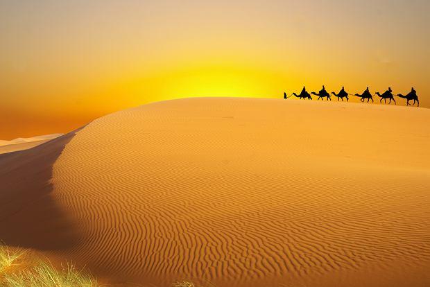 Tunezja wycieczki