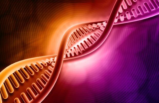 Nazwa choroba prionowa pochodzi od prionu, czyli kodowanego genetycznie czynnika bia�kowego