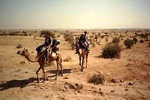 Pustynia Thar: safari na wielbłądach
