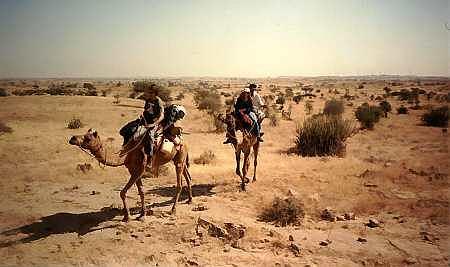 Pustynia Thar: safari na wielb��dach