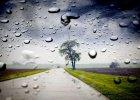 Pogoda dla wra�liwych. Prognoza na 15-21 pa�dziernika