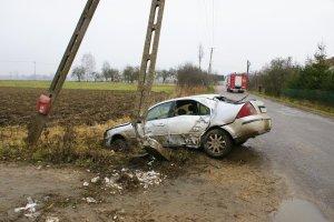 Pijany kierowca wjecha� w s�up energetyczny. Zwarcie zabi�o 27 kr�w