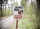 Tragedia Puszczy Bia�owieskiej wynika z jej ochrony - twierdzi Jan Szyszko
