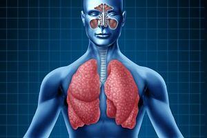 Układ oddechowy - badania