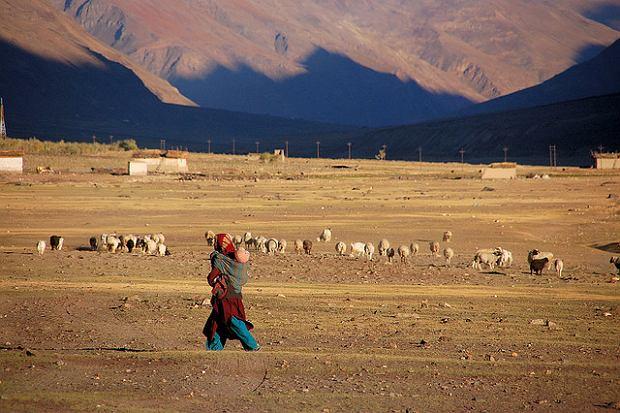 Zanskar, Indie / fot. CortoMaltese_1999/CC/Flickr.com