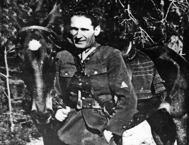 """""""Mietek"""" z parczewskiego lasu. Historia z Polski Ludowej"""