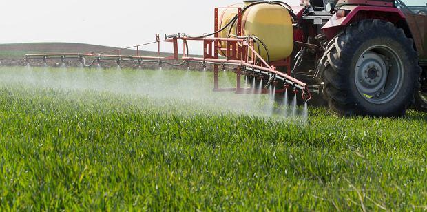 Pestycydy Stosowane Aktualne Wydarzenia Z Kraju I Zagranicy