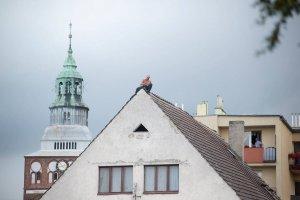 Po prawie 13 godzinach szaleniec zszed� z dachu. Wcze�niej rzuca� dach�wkami w przechodni�w i policjant�w