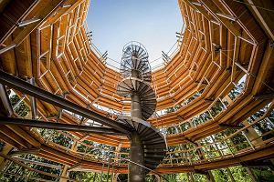 Podziwiaj Tatry spomiędzy koron drzew. Tuż przy granicy powstała nietypowa ścieżka widokowa