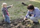 Ogródek dla przedszkolaka, by umiał odróżniać rośliny
