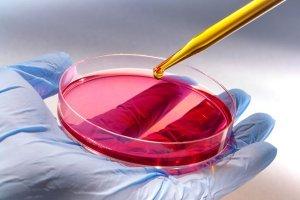 Zostań superbohaterem - odkrywcą nowych leków
