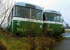 Mija r�wne 20 lat od likwidacji trolejbus�w. Czy mog� powr�ci�?