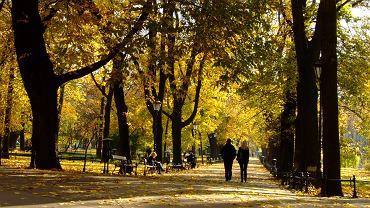 Jesień na krakowskich Plantach