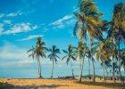 Dominikana informacje praktyczne
