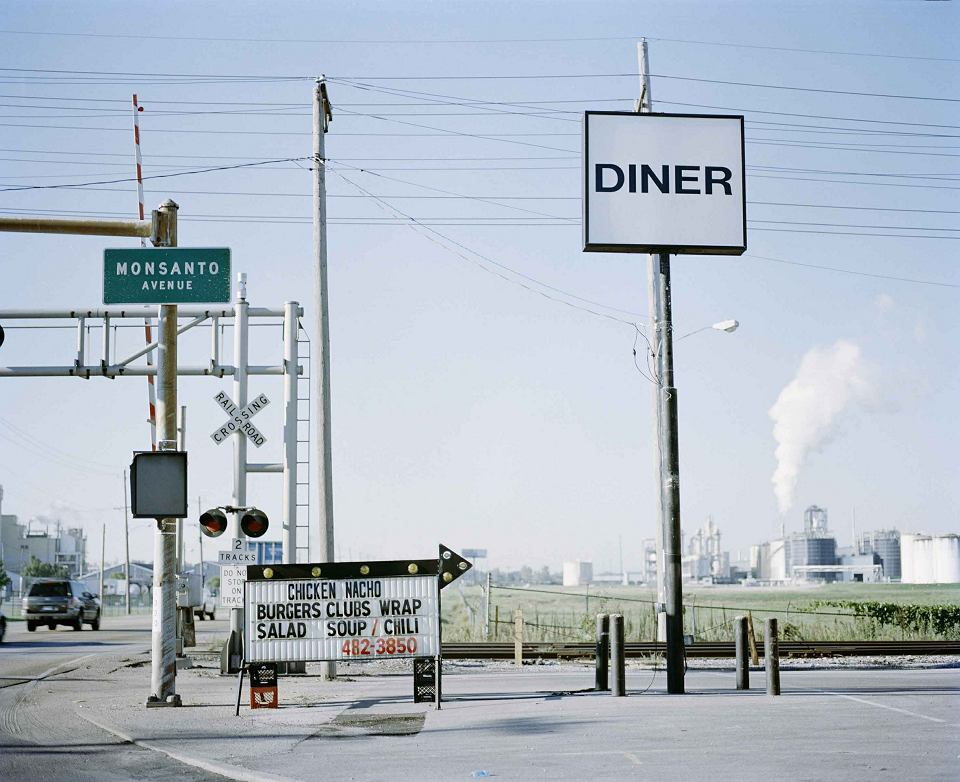Miasto Sauget w stanie Illinois było znane jako 'Monsanto City'. Zakładom chemicznym Monsanto zapewniało liberalne przepisy i niskie podatki. Fabryka w Sauget była największym w Ameryce producentem rakotwórczej substancji PCB. W strumieniu płynącym przez dzielnicę mieszkalną Sauget wykryto wysokie stężenia dioksyn i PCB