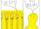 Ida  idzie do Polski, Oscar płacze  OBRAZY TYGODNIA