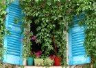 Marzysz o zieleni za oknem, ale nie masz ogrodu? Zrób ogródek na balkonie!