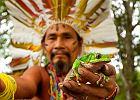 Ceremonia kambo. Kuracja jadem żaby z Amazonii pomoże albo zabije. Chętnych nie brakuje
