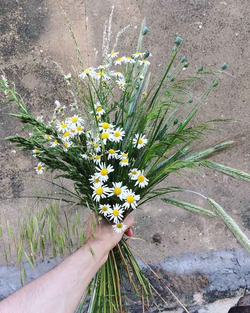 Kompozycja kwiatowa, Marcin Gładki / Instagram