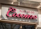 Cocomo: Goli� go�cia, ile wlezie