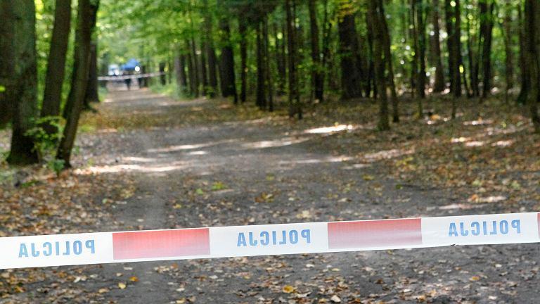 Nowy Dwór Gdański. 22-latek zgwałcił kobietę w biały dzień / Zdjęcie ilustracyjne