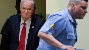 Ratko Mladić winny ludobójstwa