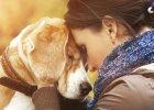Psy wyczuwają, kiedy jesteśmy smutni?