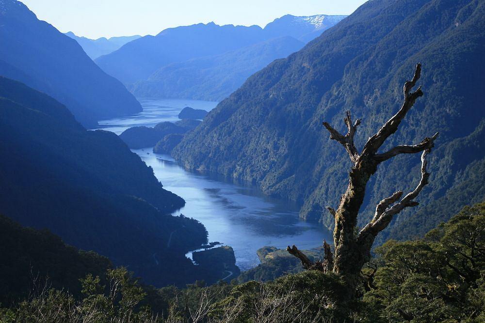 Zamach Nowa Zelandia Picture: Najpiękniejsze Fiordy Na Ziemi, A Wśród Nich Atrakcja