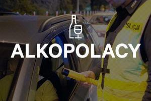 Policja łapie, sąd wypuszcza, czyli jak sądy skazują pijanych kierowców [ALKOPOLACY]