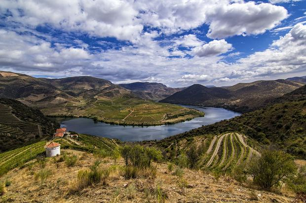 Widok na rzekę Douro.