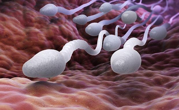 Najnowsze badania alarmują: ze spermą coraz gorzej. Laptop, otyłość i ciasne spodnie - to zabija plemniki