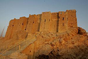 Syria: D�ihady�ci zaminowali staro�ytn� Palmir�