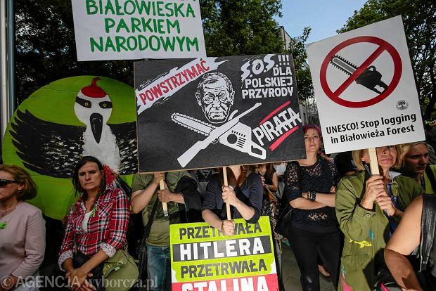 Kilkaset osób wzięło udział w dwóch demonstracjach przed Centrum Kongresowym w Krakowie. W pierwszej z nich wzięli udział obrońcy Puszczy Białowieskiej. Chcieli oni zwrócić uwagę uczestników szczytu UNESCO na problem wycinki drzew. W drugiej, zorganizowanej naprędce - zwiezieni autokarami pracownicy Lasów Państwowych z rodzinami. Obok nich stali uczestnicy miesięcznic smoleńskich z Ryszardem Majdzikiem na czele.