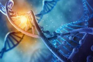Naukowcy z Harvardu za pomocą terapii genowej wyleczyli wrodzoną niedokrwistość