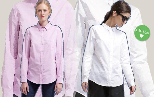 Koszula w m�skim stylu - jak nosi�