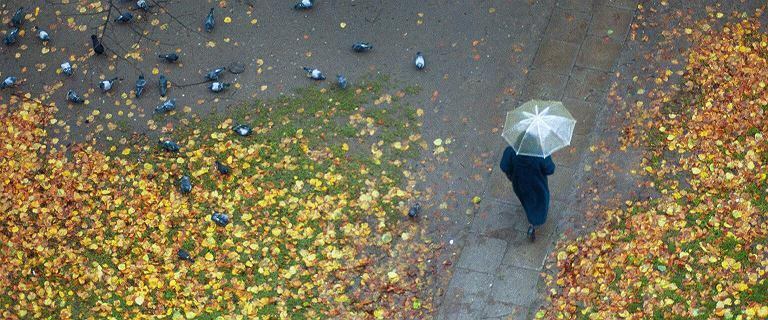 Pogoda w sobotę. Oto prawdziwa jesień: będzie chłodno, można spodziewać się deszczu