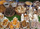 Jakie są grzyby jadalne w Polsce - jak je odróżnić od trujących?