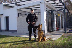 Nowy czworonożny funkcjonariusz przyjęty do policji [ZDJĘCIA]