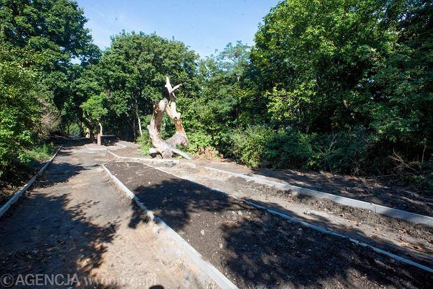 Zdjęcie numer 0 w galerii - Prace  w kolejnym bydgoskim parku. Na Wzgórzu Wolności