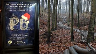 Leśnicy widzą w puszczy materiał na meble i opał do kominka oraz zapraszają na spacery do tego lasu. Z prawej - tak wyglądają zniszczone przez nich szlaki