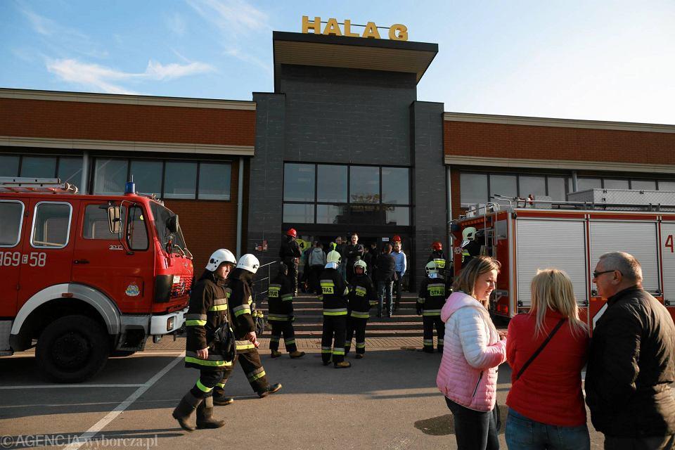 fee4285df0f3b Zdjęcie numer 10 w galerii - Pożar w CH Ptak. 20 zastępów straży pożarnej w