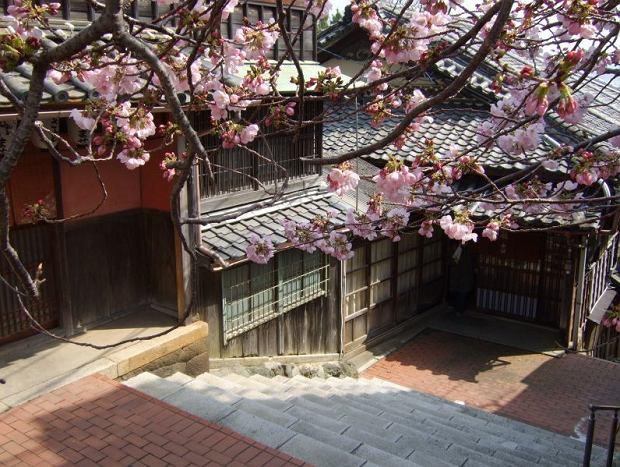 Japonia - Świątynie w Ise / Flickr.com / Yuki Yaginuma