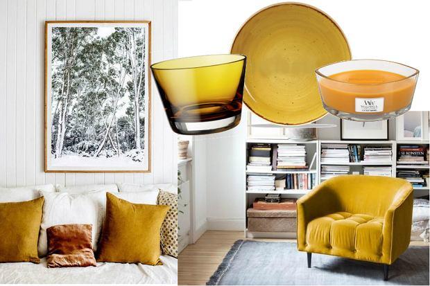 41a0c77c55dec Miodowa żółć - najmodniejszy kolor do twojego mieszkania
