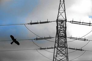 Linie energetyczne na dzia�ce
