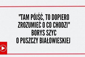 """""""Tam pójść, to dopiero zrozumieć, o co chodzi"""". Borys Szyc o Puszczy Białowieskiej"""