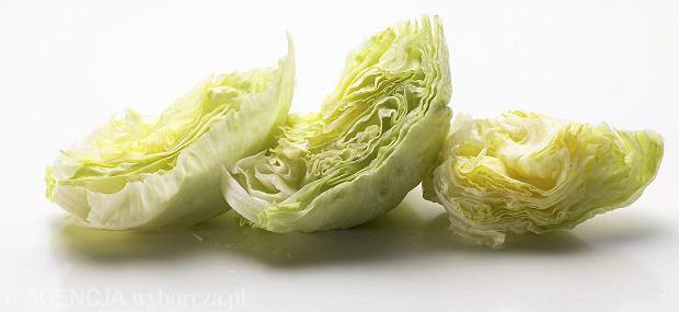 Pocięte liście sałaty w torebkach zwiększają zagrożenie rozwoju salmonelli ponad 2 tys. razy