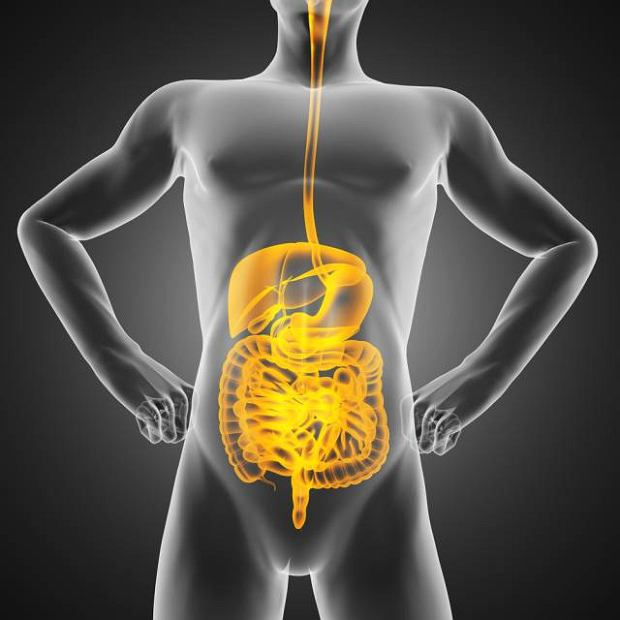 Badanie pozwala przede wszystkim oceni� funkcjonowanie �o��dka lub jelit