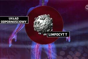 """Prze�omowe badania Amerykan�w nad leczeniem ostrej bia�aczki. Polscy lekarze: """"Niebywa�e"""""""